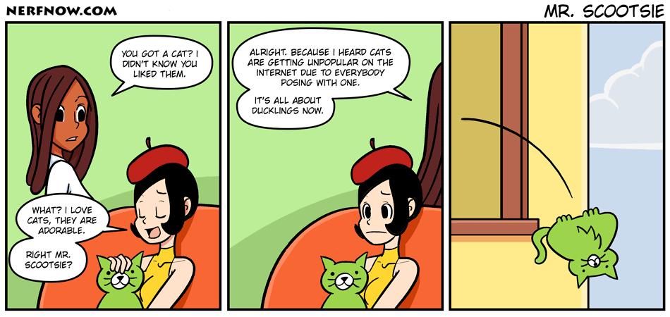 Mr .Scootsie